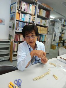 宮崎学芸員です